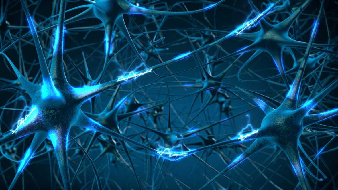 Protección neuronal frente al daño por ictus o epilepsia